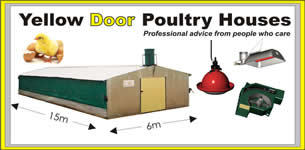 What Size Chicken House Should I Build